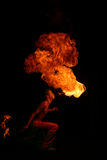 Incêndio do cuspo Imagem de Stock