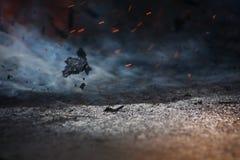 Incêndio e cinzas no vento imagem de stock royalty free