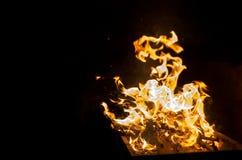 Incêndio e flamas no fundo preto Fotos de Stock Royalty Free