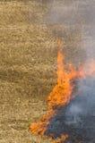 Incêndio em um campo fotografia de stock