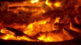 Incêndio na natureza Bokeh do fogo vídeos de arquivo