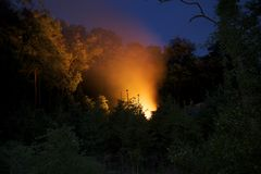 Incêndio nas árvores Imagens de Stock Royalty Free