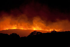 Incêndio selvagem na noite Fotos de Stock Royalty Free