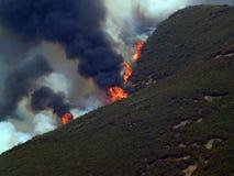 Incêndio violento na floresta   imagens de stock royalty free