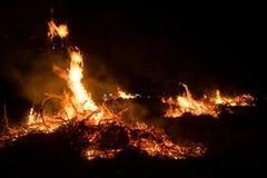 Incêndio violento que queima-se na grama e na madeira na noite foto de stock royalty free