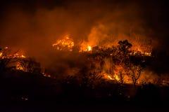 Incêndios florestais imagem de stock
