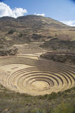 Inca agricultural terraces at Moray Royalty Free Stock Photo