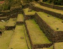 Inca agriculture terraces stock photo