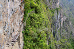 Inca Bridge près de Machu Picchu au Pérou Photos stock