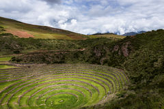 Inca circular terraces in Moray, in the Sacred Valley, Peru. Moray is an archeological site, close to the village of Maras. The ruins consist on several Royalty Free Stock Photo