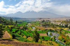 Inca Garden och Misti Volcano - Arequipa, Peru Royaltyfria Foton