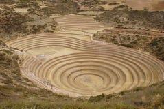 Inca laboratory Stock Image