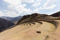 Inca landbouwplaats Stock Afbeeldingen