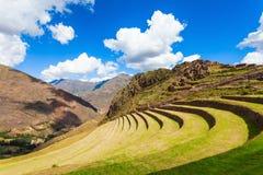 Inca Pisac, Перу стоковые фотографии rf