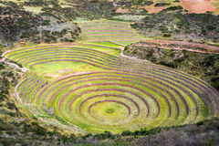Inca Ruin of Moray. Concentric circles of the old Inca ruins of Moray in the Sacred Valley near Cusco, Peru royalty free stock photo