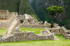 The Inca ruins at Machu Picchu, Peru Royalty Free Stock Photography