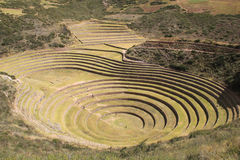 Inca ruins of Moray. Moray or Muray is an archaeological site in Peru approximately 50 km (31 mi) northwest of Cuzco. The site contains unusual Inca ruins Stock Photo