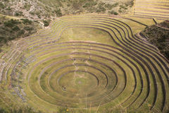 Inca ruins of Moray. Moray or Muray is an archaeological site in Peru approximately 50 km (31 mi) northwest of Cuzco. The site contains unusual Inca ruins Royalty Free Stock Image