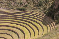 Inca ruins of Moray. Moray or Muray is an archaeological site in Peru approximately 50 km (31 mi) northwest of Cuzco. The site contains unusual Inca ruins Stock Image
