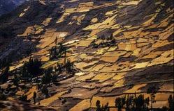 Inca terrace on Chavin #2 Royalty Free Stock Photography