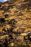 Inca terrace on Chavin Royalty Free Stock Photos