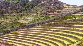Inca Terraces Fotografia Stock