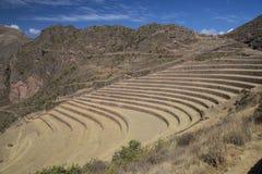 Inca Terraces Images stock