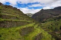Inca Terraces dans Pisac, Pérou Images stock