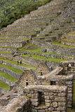 Inca Terraces - Machu Picchu - Peru. The Inca ruins and terraces of Machu Picchu in Peru in South America Stock Photography