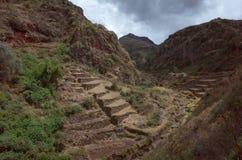 Inca terraces near Pisac Royalty Free Stock Image