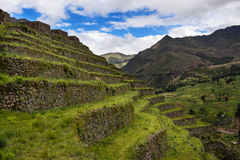 Inca Terraces in Pisac, Peru. Old Inca built terraces near the ruins of Pisac, in the Sacred Valley, Peru Stock Images