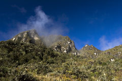 Inca Trail Stock Images