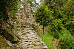 Inca Trail at Intipunku Stock Photo