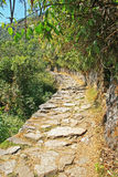 The Inca trail. Machu Picchu, Peru Royalty Free Stock Photography