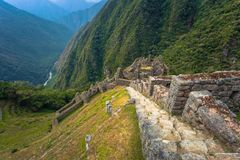 Inca Trail, Peru - August 03, 2017: Ancient ruins of Winay Wayna on the Inca Trail, Peru. Inca Trail, Peru - August 03, 2017: The Ancient ruins of Winay Wayna on royalty free stock photography