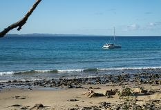 Incagliato dalla spiaggia fotografia stock