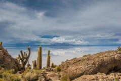 Incahuasi ö, Salar de Uyuni, Bolivia Royaltyfri Fotografi