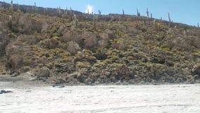 Incahuasi-Insel-alias Kaktus-Insel auf Salar de Uyuni, der größte das Salz-Sumpf der Welt stock video