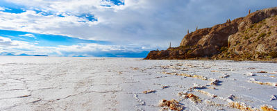 Incahuasi island in Salar de Uyuni in Bolivia Stock Photo