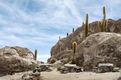 Incahuasi Island, Salar de Uyuni Royalty Free Stock Images