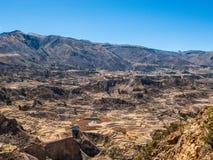 Incan террасные поля в долине Colca Стоковая Фотография