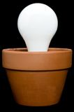 Incandescant bulb in a planter Stock Photography
