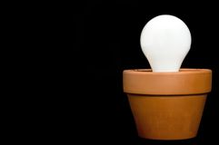 Incandescant bulb in a planter Royalty Free Stock Photos