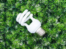 Incandescence light bulb on artificial grass. Green concept Royalty Free Stock Images