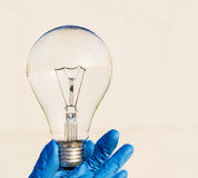 Incandescence light bulb. In blue hand Stock Image