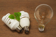 Incandescent and Compact  fluorescent ,energy-saving Royalty Free Stock Image