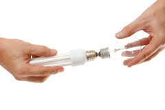 Incandescent and energy-saving lamp in the hands Royalty Free Stock Image