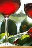Incandescenza di vino rosso Fotografia Stock