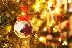 Incanto fortunato di Natale decorativo con i nastri blu e melograno fortunato Immagini Stock Libere da Diritti