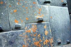 Incas brain Royalty Free Stock Image
